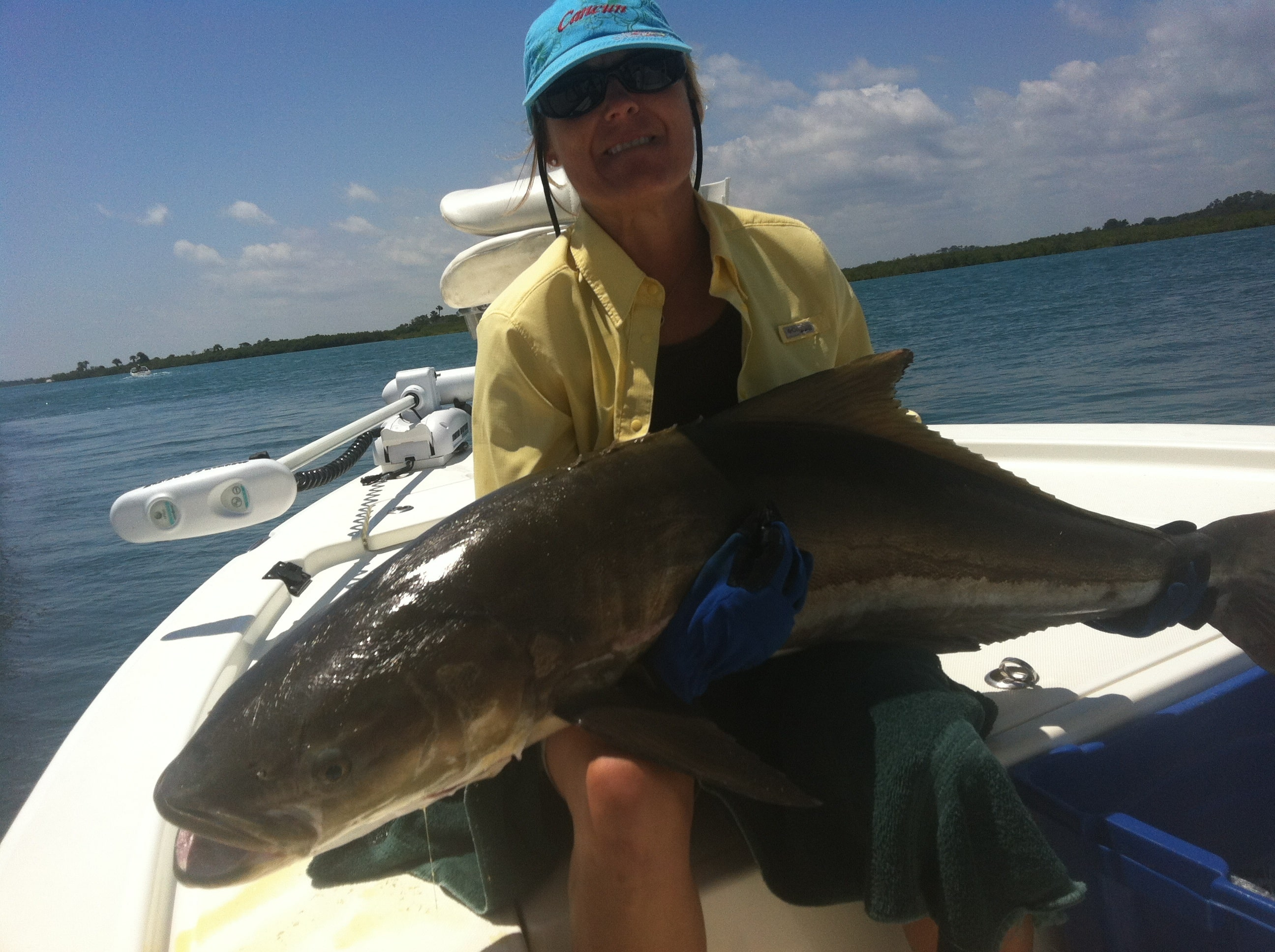 Fishing Orlando /Daytona /Ponce Inlet New Smyrna Beach Report Cobia